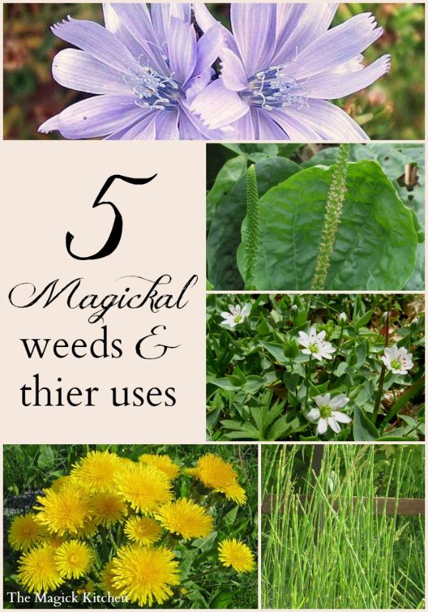 Magickal Weeds