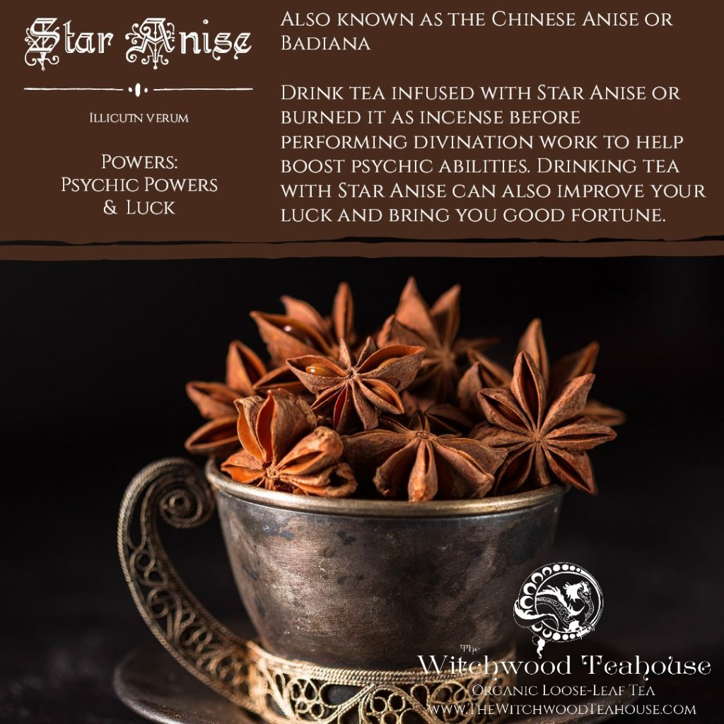 Star Anise – The Magick Kitchen